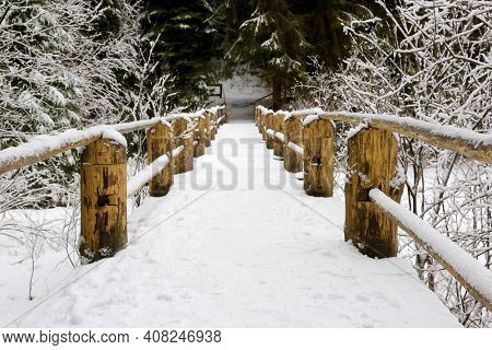 wooden bridge with fence in winter forest