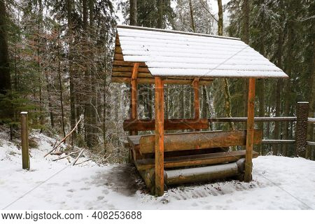 wooden gazebo in the winter forest