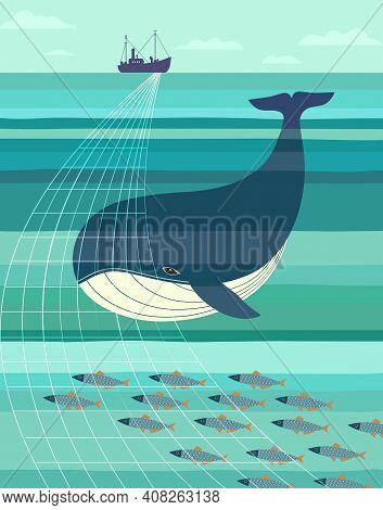Blue Whale And Fishes Smim To Trawl Net. Nautical Vector Poster Minimalist Style. Ocean Habitat Prot