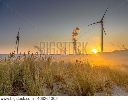 Dune Vegetation With Wind Turbines. Natural Plants In Industrial Landscape. Wijk Aan Zee, North Holl
