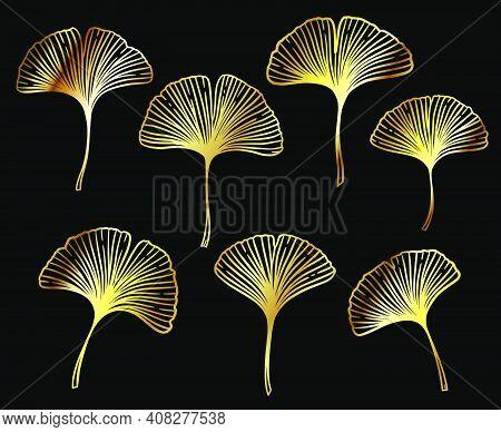Ginkgo Or Gingko Biloba Golden Leaves Set. Nature Botanical Gold Vector Illustration, Decorative Met