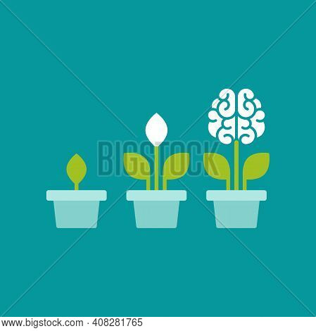 Flower Brain With Green Leaves In Blue Pot. Intellect, Phsychology, Knowledge, Education Concept. Fl