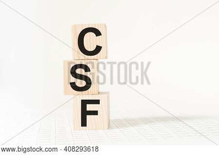 Word Csf On Wooden Blocks. Medical Concept . The Medicine