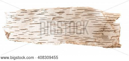 Birch Bark On A White Isolated Background