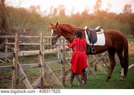 Equestrian Sport Woman Jockey Holding Horse By Bridle Outdoors
