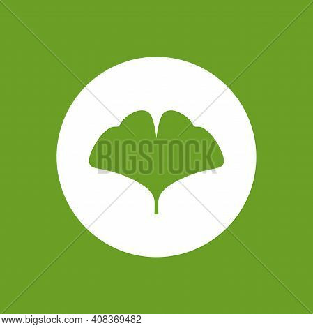 Cartoon Flat Green Ginkgo Biloba Leaf In Circle Isolated On White. Nature Eco Icon. Vector Illustrat