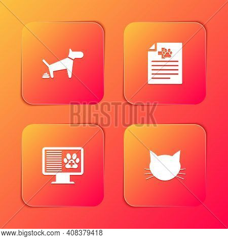 Set Dog Pooping, Medical Certificate For Dog Or Cat, Clinical Record Pet On Monitor And Cat Icon. Ve