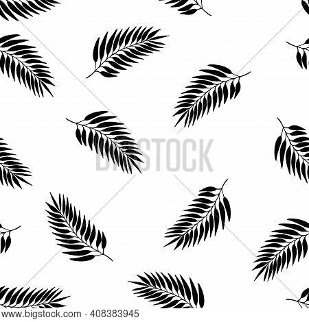 Floral Autumn Seamless Pattern With Black Exotic Leaves Silhouette On White Background. Tropic Branc