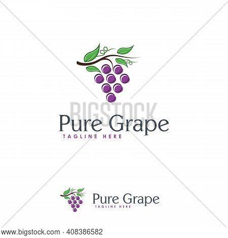 Pure Grape Logo Designs Template, Great Grape Logo Template