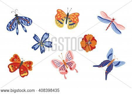 Spring Flowers And Butterflies. Collection Of Colorful Exotic Butterflies Moths And Dragonfly Isolat