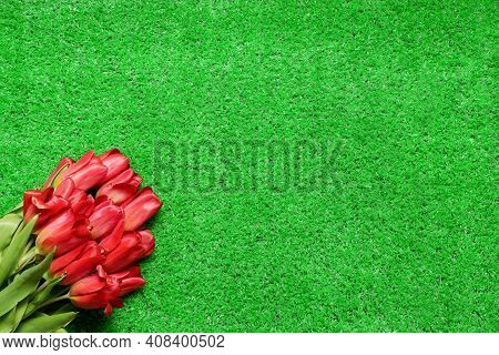 Bouquet Of Beautiful Red Tulips On Spring Green Grass Lawn Background With Copy Space. Holiday, Wome