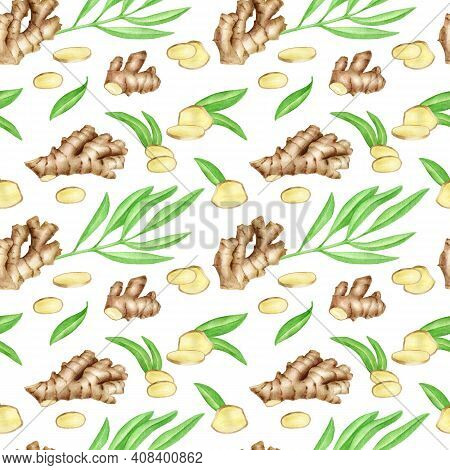 Watercolor Ginger Root Seamless Pattern With Slices And Leaves. Hand Drawn Ginger Rhizome Isolated O