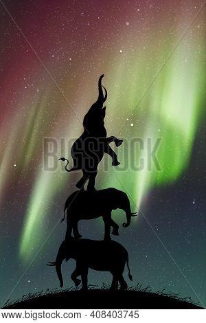Elephants Reach For Stars At Night. Animal Silhouette. Aurora Borealis