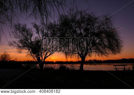 Beautiful Sunset Or Sunrise With View On A Lake. Rural Scene With Silhouette Of Weeping Willow And B