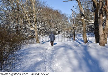 Man Is Walking In A Snowy Winterland In The Woods