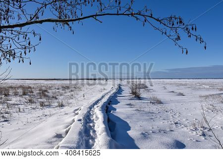 Trail In A Wintry Marshland In The Nature Reserve By Beijershamn On The Island Oland In Sweden