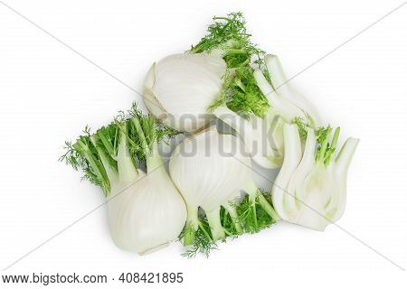 Fresh Fennel Bulb Isolated On White Background With Clipping Path And Full Depth Of Field. Top View.