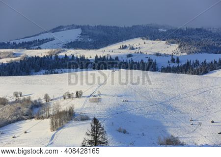 winter landscape in Carpathian mountains, Ukraine