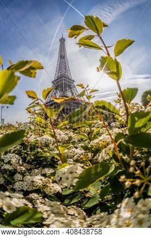 Eiffel Tower With Spring Trees Against Sunrise In Paris, France