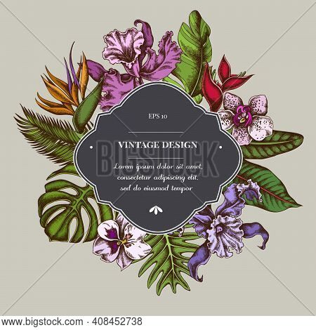 Badge Over Design With Monstera, Banana Palm Leaves, Strelitzia, Heliconia, Tropical Palm Leaves, Or