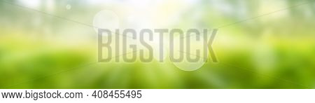 Blurred Bright Green Spring Background. Abstract Landscape With Shining Bokeh. Space For Design And