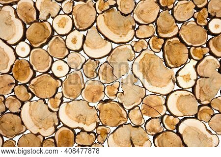 Wood Panel From Sections Of A Trunk Of A Juniper Tree. Natural Background Pattern From Juniper Wood.