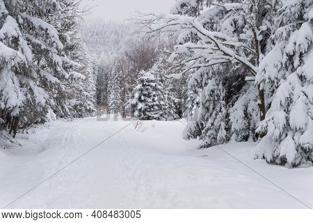 Jizera Mountains In Winter, Covered With A Thick Layer Of Snow. Jizera Mountains In Poland. It Is Sn