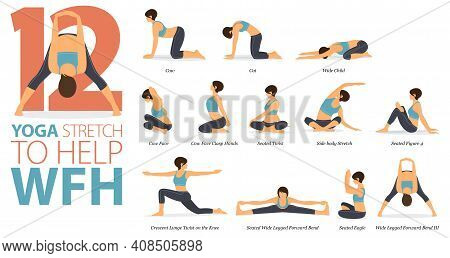 Infographic 12 Yoga Poses For Workout In Concept Of Stretch To Help Wfh In Flat Design. Women Exerci