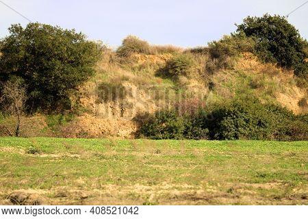 Chaparral Plants Covering An Arid Hillside Besides A Lush Green Field On Rural Grasslands Taken At A