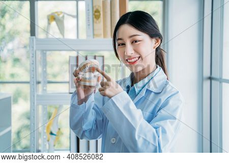 Portrait Of Happy And Successful Asian Dental Doctor Holding False Teeth While Explaining Every Teet