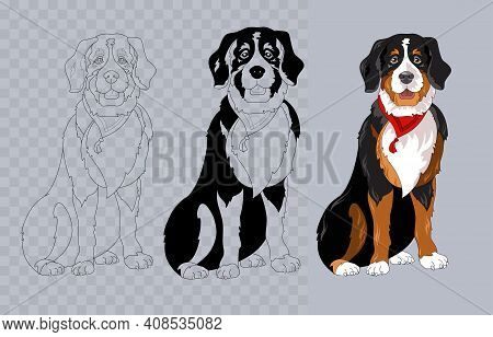 Breed Bernese Mountain Dog With Bandana. Colorful And Linear. Vector.