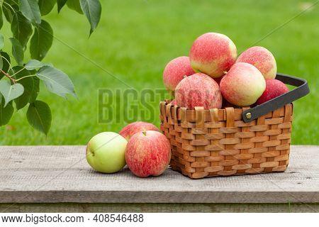 Ripe garden apple fruits in basket on wooden outdoor table