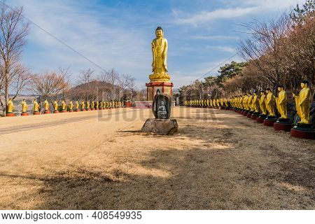 Large Golden Standing Buddha In Field Lined With Standing Buddhas At Manbulsa Temple In Yeongcheon,