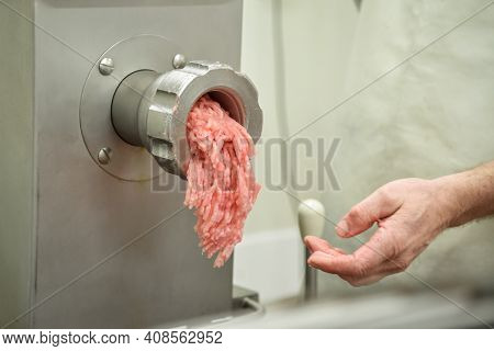 Filling Comes Out Through Raw Meat Grinder Sieve. Grinder Closeup. Electric Mincer Machine With Fres