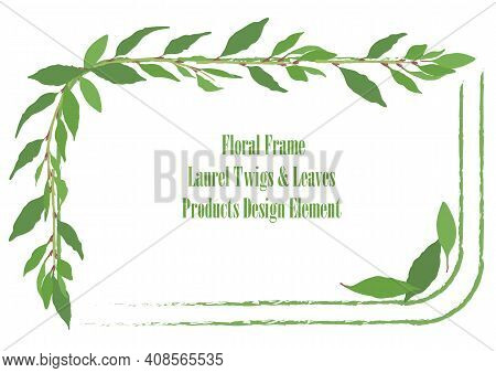 Squarish Frame With Rounded Corners And Hand Drawn Laurel Twigs And Leaves. Rough Brush Strokes For