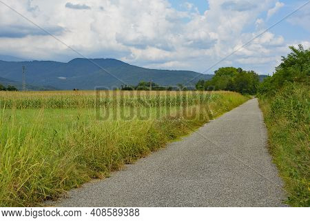 An Unmarked Cycle Lane In Rural Friuli-venezia Giulia, North East Italy, Near Cividale Del Friuli. A