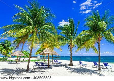 Tropical Landscape With Coconut Palm On Caribbean Beach, Cancun, Yucatan Peninsula In Mexico.