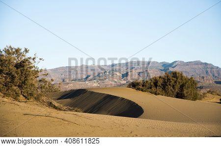 Maspalomas  Sand Dunes In Nature Park , Gran Canaria, Spain