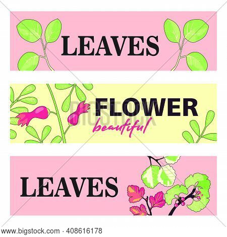 Promotional Banner Designs With Leaves And Flowers. Colorful Banners On Pastel Background With Bloss