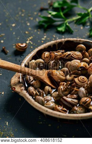 closeup of an earthenware plate with some caracolillos en caldo, a spanish recipe of small snails cooked in broth typical of andalusia, on a dark green wooden table