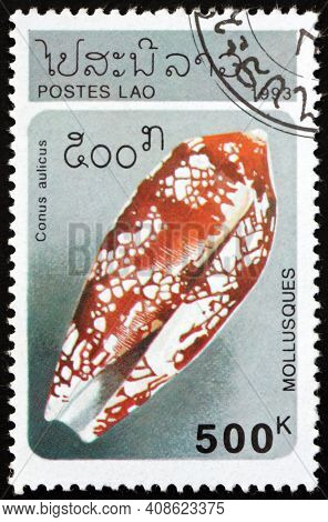 Laos - Circa 1993: A Stamp Printed In Laos Shows Princely Cone, Conus Aulicus, Is A Species Of A Pre