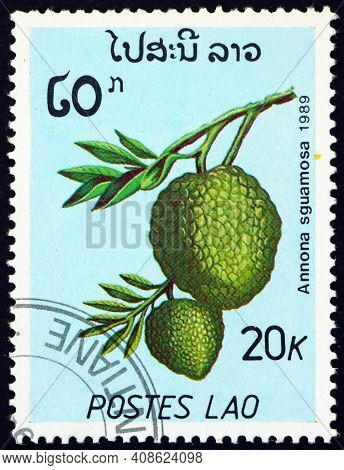 Laos - Circa 1989: A Stamp Printed In Laos Shows Sugar-apple (annona Squamosa), Is A Small Tree Or S