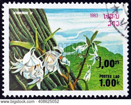 Laos - Circa 1983: A Stamp Printed In Laos Shows Rock Orchid, Dendrobium Speciosum, Orchid Native To