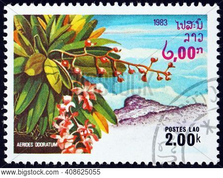 Laos - Circa 1983: A Stamp Printed In Laos Shows Aerides Odorata, Orchid Native To Southeast Asia, C