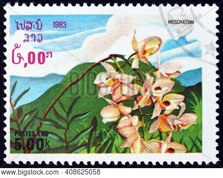 Laos - Circa 1983: A Stamp Printed In Laos Shows The Musky-smelling Dendrobium, Dendrobium Moschatum