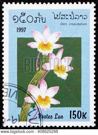Laos - Circa 1997: A Stamp Printed In Laos Shows Shoe-lipped Dendrobium, Dendrobium Crepidatum, Is A