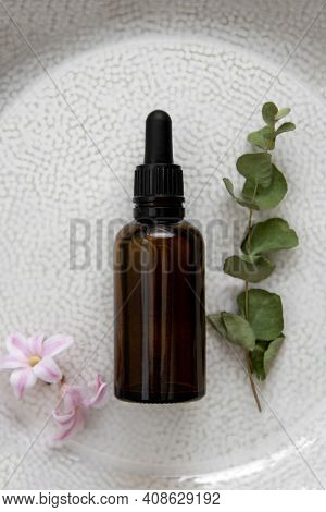 Essence Serum. Dark Pipette Botle, Cosmetics Skin Care. Dried Plants Top View