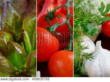 Collage Of Fresh, Raw Vegetables And Herbs. Tomatoes, Garlic And Lettuce For Healthy Cooking