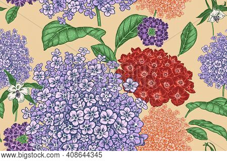 Floral Seamless Pattern. Garden Flowers Hydrangea. Handmade Graphics. Victorian Style. Vector Cover