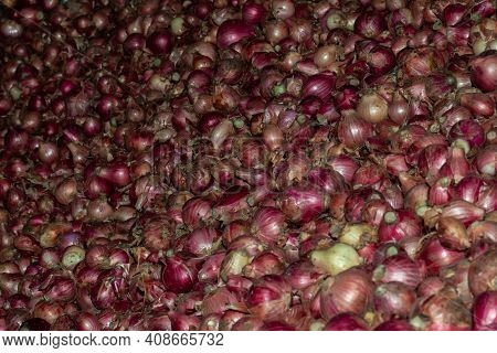 Mass Onion In The Store And The Bulb Onion Or Common Onion, Is A Vegetable That Is The Most Widely C